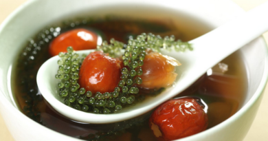 Rong nho biển – Đặc sản quý hiếm ở Nha Trang